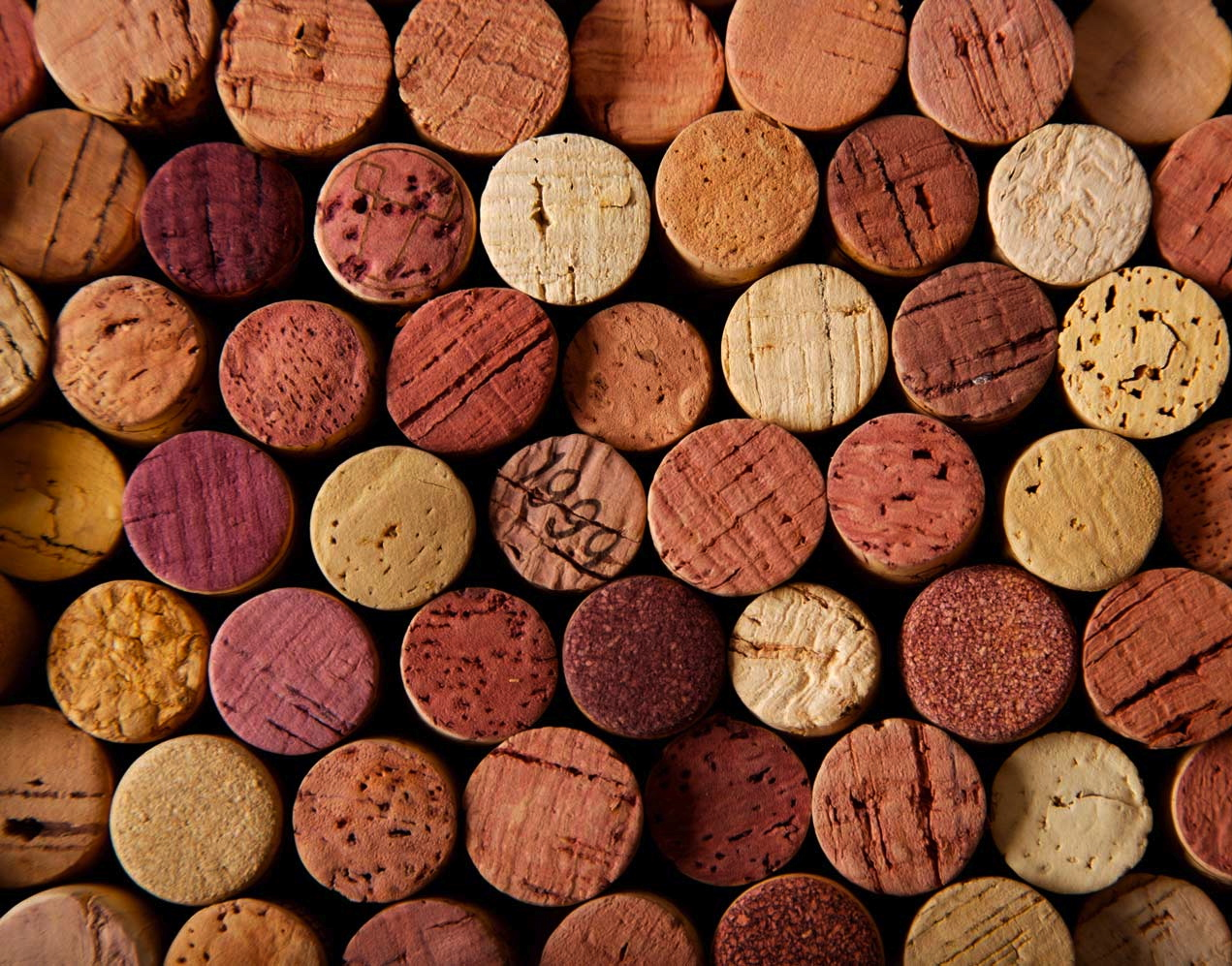 Italiaans Wijnfeest zondag 1 oktober a.s.