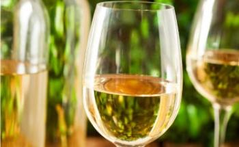 wijnen-7