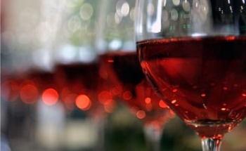 wijnen-8